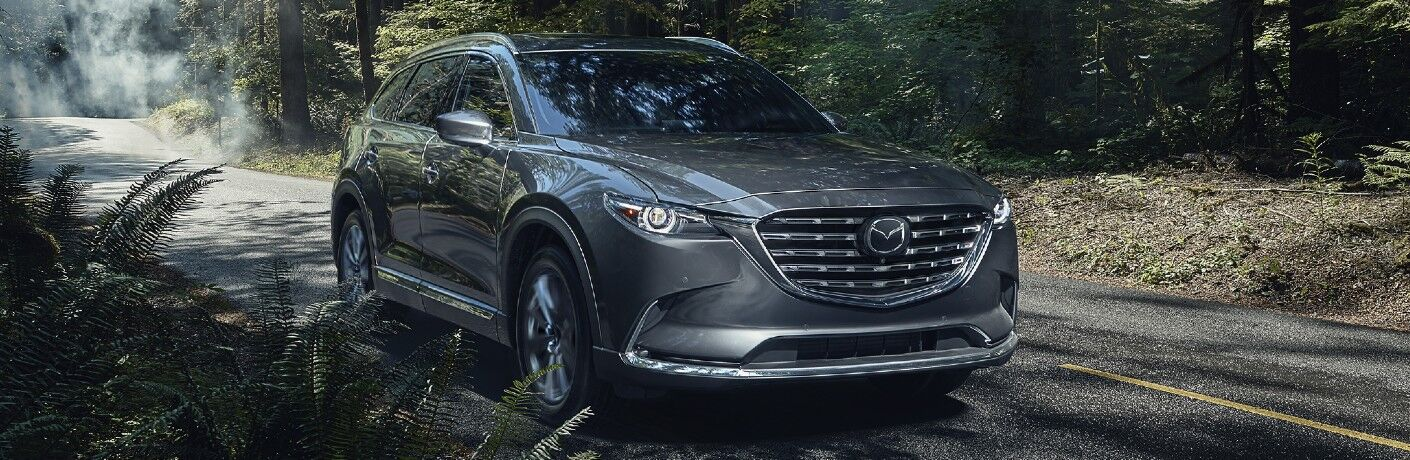 2021 Mazda CX-9 on fern-lined road