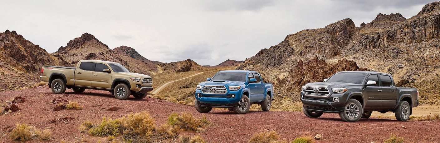 3 of the Tacoma models in the desert