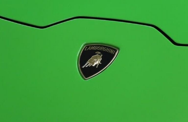 up close Lamborghini symbol