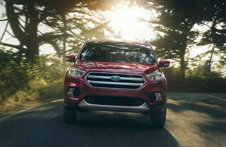 2018 Ford Escape driving in forest