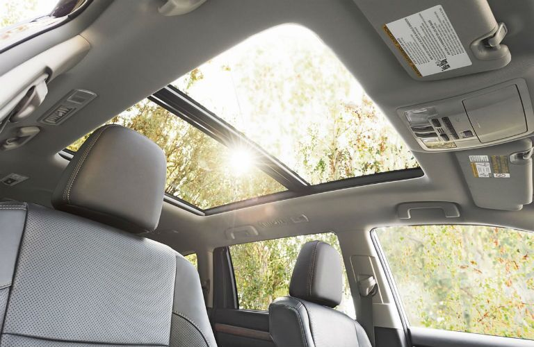 Looking out the available moon roof of the 2019 Toyota Highlander