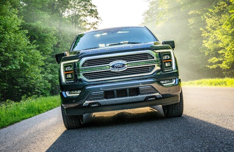 2021 Ford F-150 grille