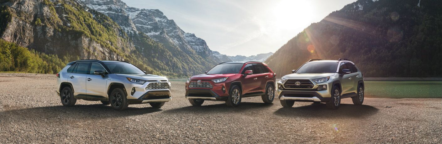 three 2019 Toyota RAV4 models parked next to each other with mountains in the background