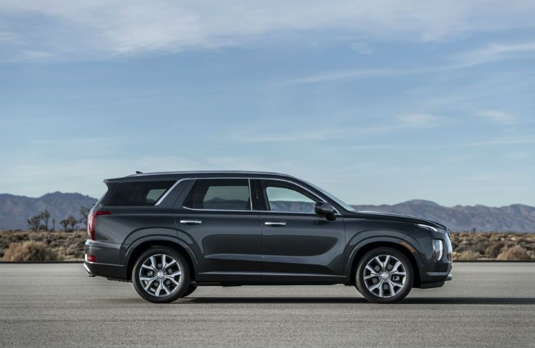 Side view of a 2020 Hyundai Palisade beside the desert