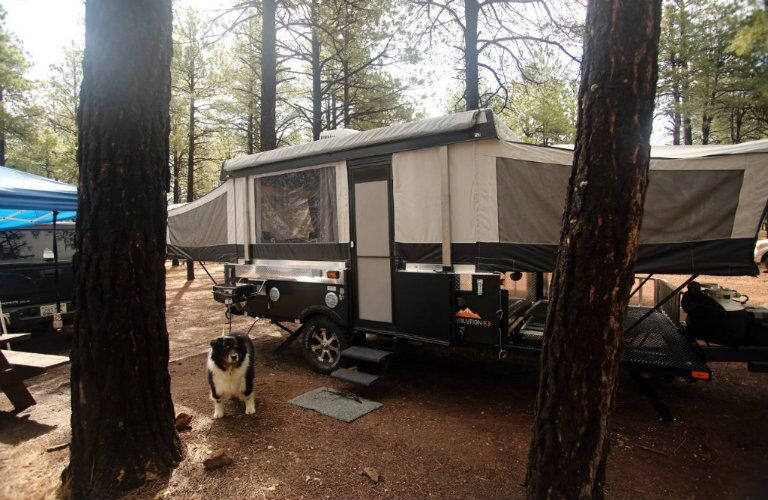 Somerset camping trailer exterior side with dog