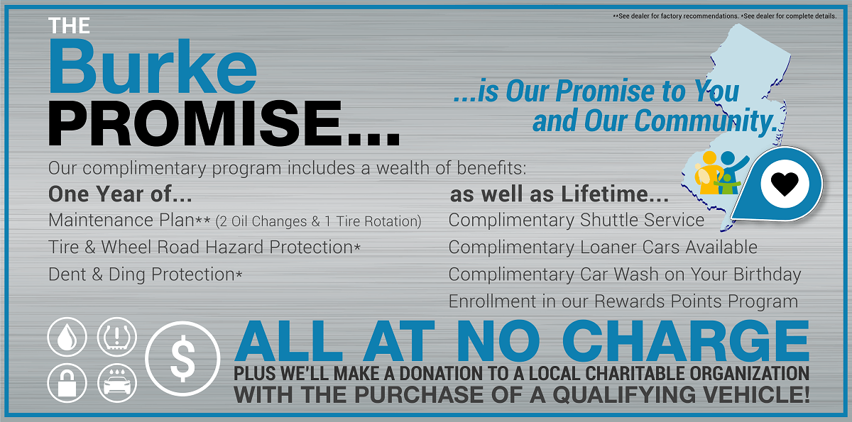 The Burke Promise Banner with Details