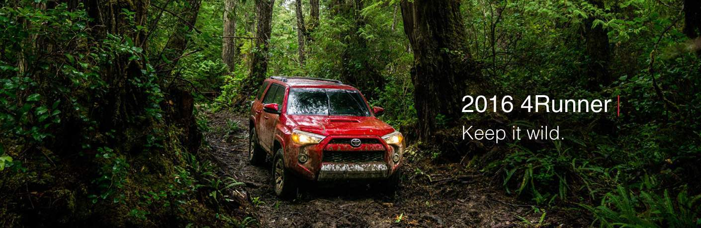 Mud Covered 2016 Toyota 4Runner in a heavily forested area