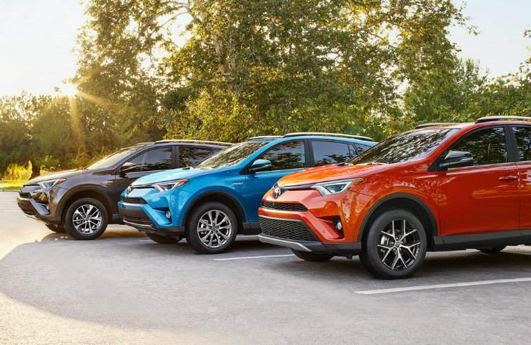 Three 2016 Toyota RAV4 models parked by a tree