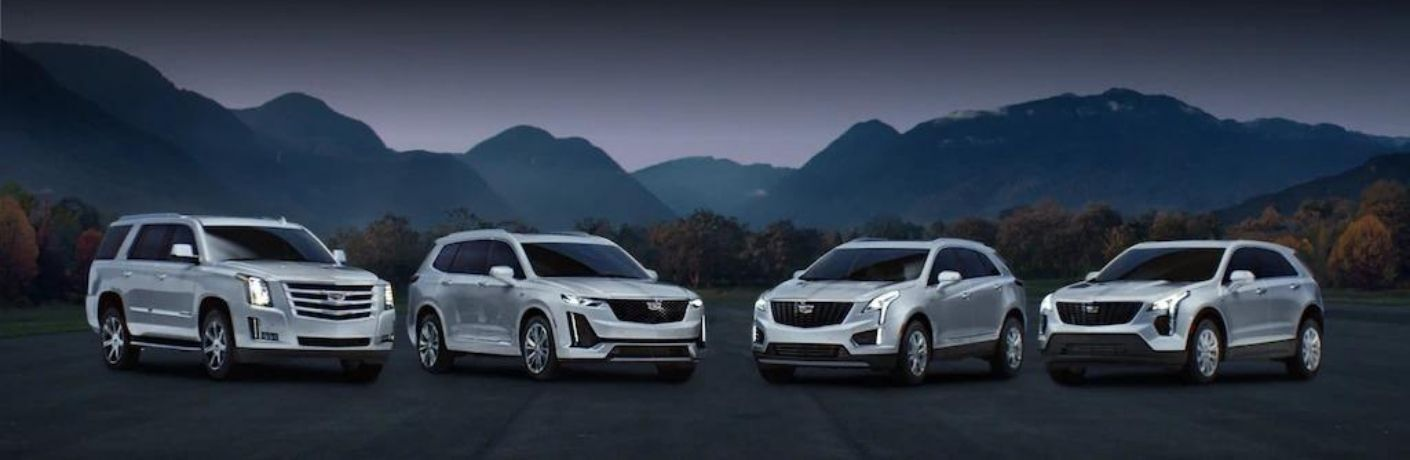 Exterior view of four silver 2020 Cadillac models