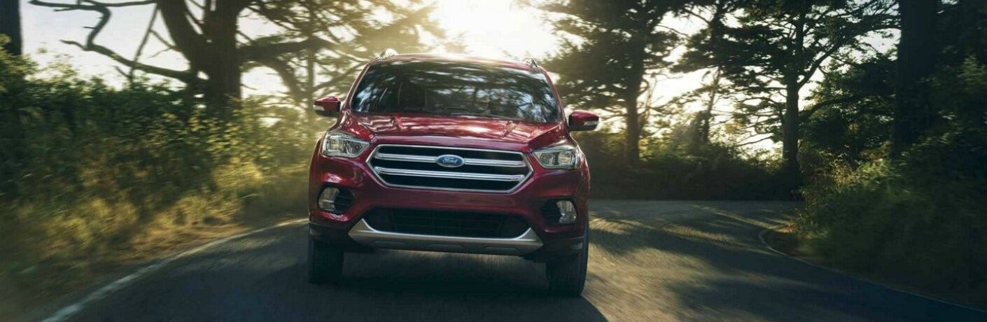 Red 2018 Ford Escape Driving Through a Forest