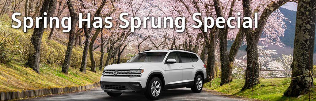 Spring has Sprung Special