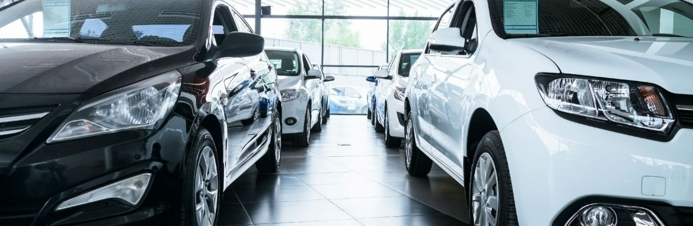 A stock photo of vehicles lined up in a dealership's showroom.