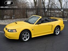 Ford Mustang GT Premium 2004