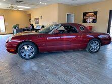 Ford Thunderbird Premium 2004