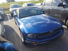 Ford Mustang Deluxe 2008
