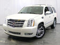 2010_Cadillac_Escalade_Platinum Edition AWD_ Addison IL