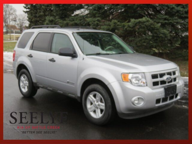 2010 Ford Escape Hybrid Paw Paw MI