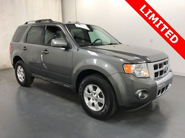 2010 Ford Escape Limited Holland MI