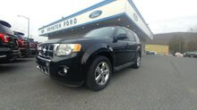 2010_Ford_Escape_Limited_ Nesquehoning PA