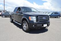 2010 Ford F-150 FX4 Grand Junction CO
