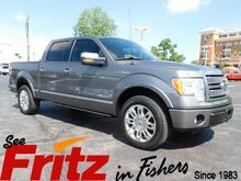 2010_Ford_F-150_Platinum_ Fishers IN