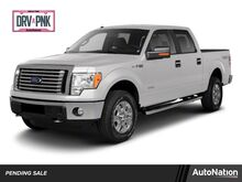 2010_Ford_F-150_XLT_ Houston TX