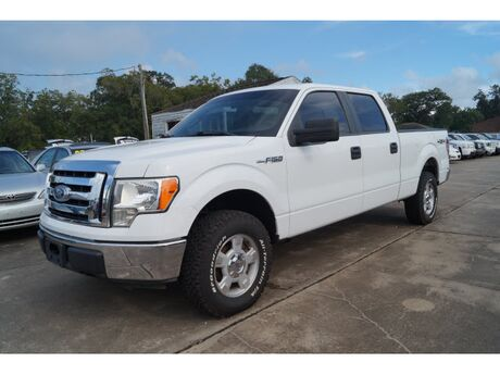 2010 Ford F-150 XLT Richwood TX