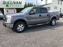 2010_Ford_F-150_XLT SuperCrew 6.5-ft. Bed 4WD_ Woodbine NJ