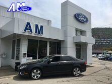 Ford Fusion SPORT 2010