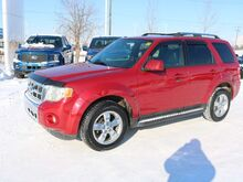 2011_Ford_Escape_Limited_ Edmonton AB