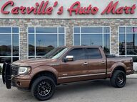 2011 Ford F-150 Platinum Grand Junction CO