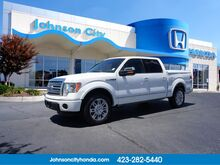 2011_Ford_F-150_Platinum_ Johnson City TN