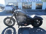 2011 No Make XL883N - IRON 883