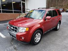 2012_Ford_Escape_Limited_ Covington VA