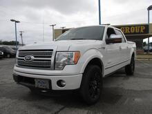 2012_Ford_F-150_Platinum_ Dallas TX
