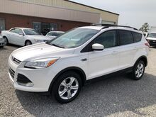 2013_Ford_Escape_SE_ Ashland VA
