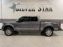 2013_Ford_F-150_Platinum 4WD_ Dallas TX