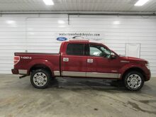 2013_Ford_F-150_Platinum_ Watertown SD
