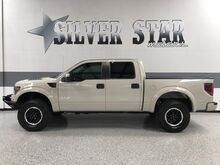 2013_Ford_F-150_SVT Raptor 4WD V8_ Dallas TX