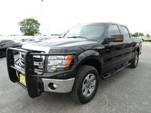 2013_Ford_F-150_XL SuperCrew 6.5-ft. Bed 2WD_ Houston TX