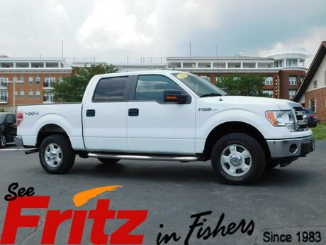 2013 Ford F-150 XLT Fishers IN