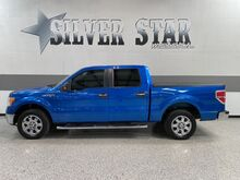 2013_Ford_F-150_XLT RWD V8 5.0L_ Dallas TX