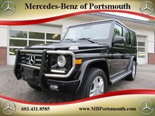 2013_Mercedes-Benz_G-Class_G 550_ Greenland NH