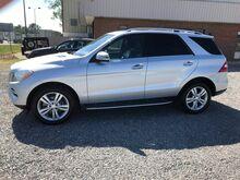 2013_Mercedes-Benz_M-Class_ML 350 4MATIC_ Ashland VA