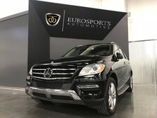 Mercedes-Benz M-Class ML 350 BlueTEC 2013
