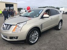 2014_Cadillac_SRX_Performance Collection FWD_ Gaston SC