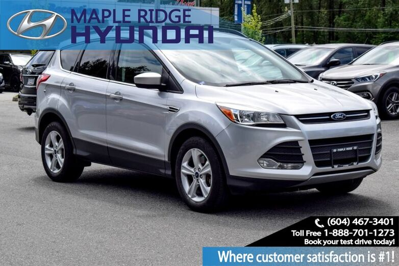 2014 Ford Escape 4WD 4dr SE Maple Ridge BC