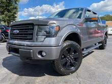 2014_Ford_F-150_FX4_ Raleigh NC