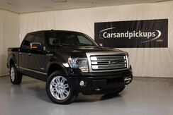 2014_Ford_F-150_Platinum_ Dallas TX