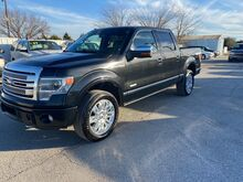 2014_Ford_F-150_Platinum_ Gainesville TX